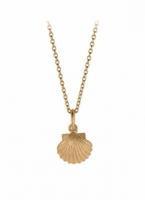 Seashell Necklace Gold Plated