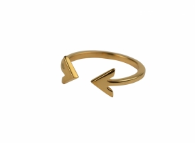 Strict Plain Double Arrow Ring, Gold