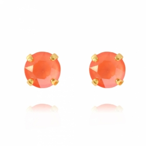 Classic Stud Earrings Gold, Light Coral